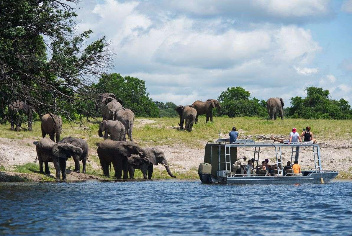botswana_chobe-national-park_zambezi-queen_zq-game-viewing-chobe-national-park_1_max1200x800